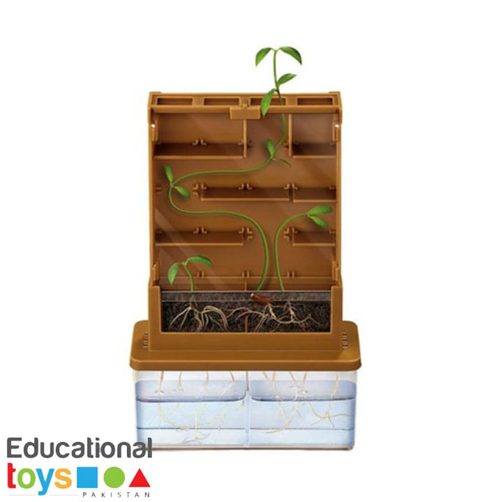 grow-a-maze-science-kit-1