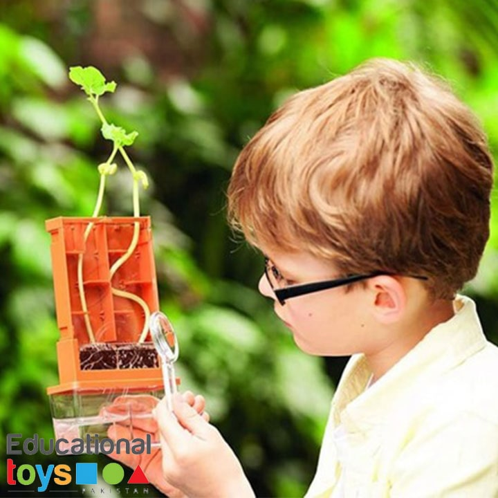 grow-a-maze-science-kit-3