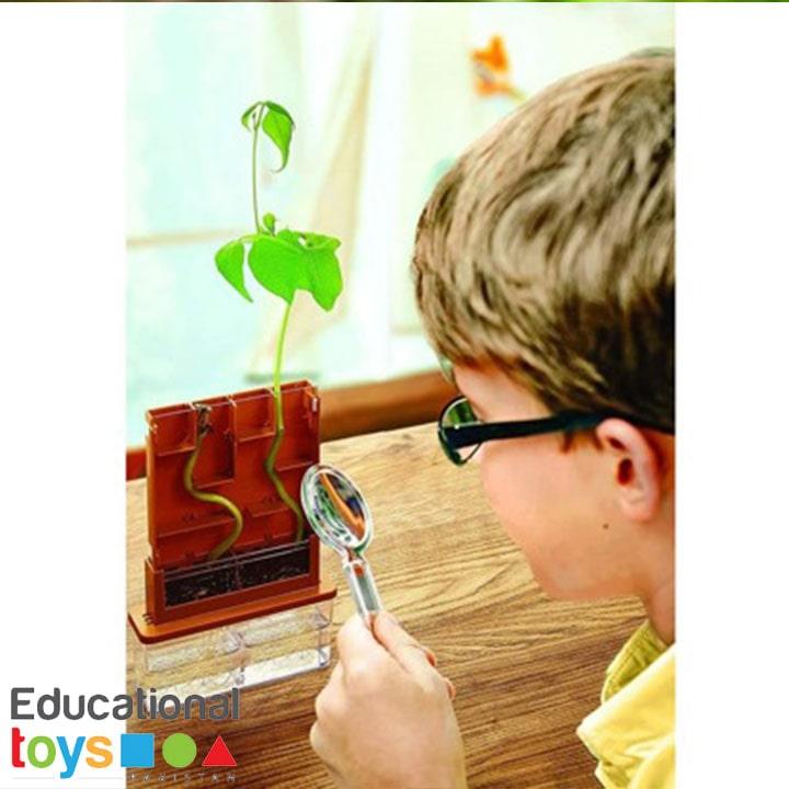 grow-a-maze-science-kit-4