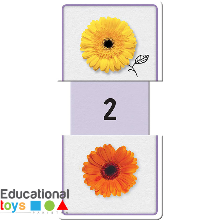 slide-&-learn-numbers-flash-cards-1